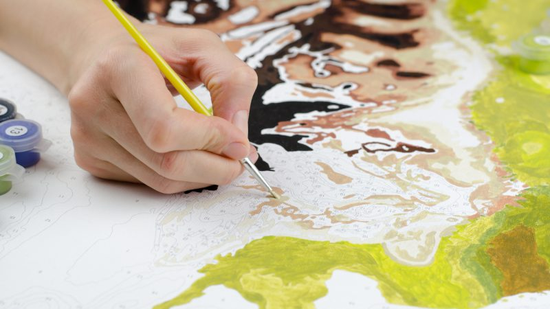 zdjęcie do malowania po numerach
